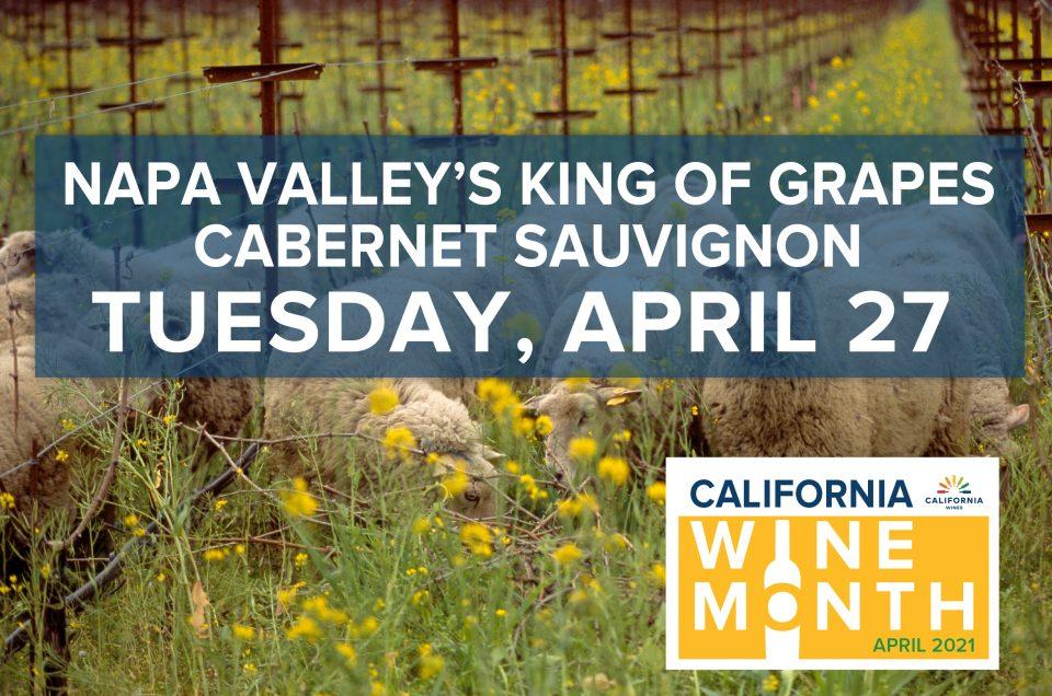 Napa Valley's King of Grapes - Cabernet Sauvignon